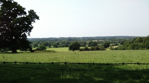 Stour valley